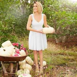LC Lauren Conrad Mesh Back Dress